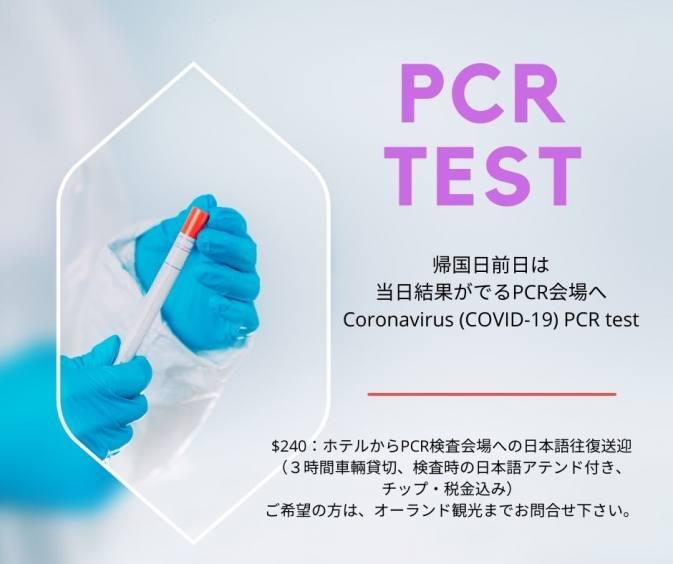 PCR 検査(即日結果)COVID-19 PCR Testing (Same Day Results)